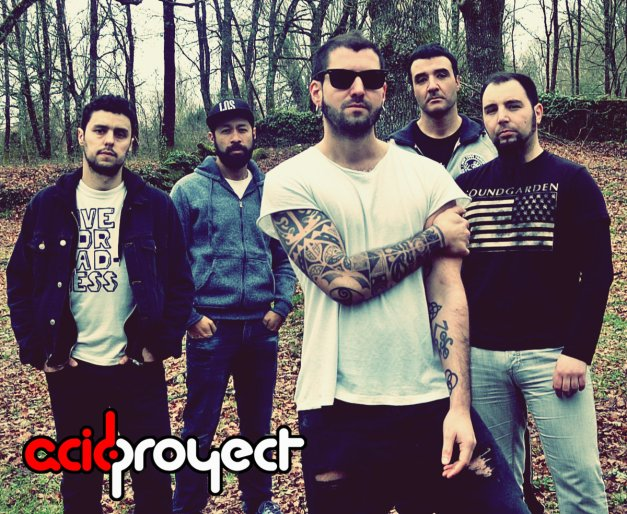 acid project
