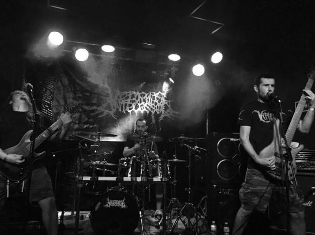 Vermis-Pic-Live